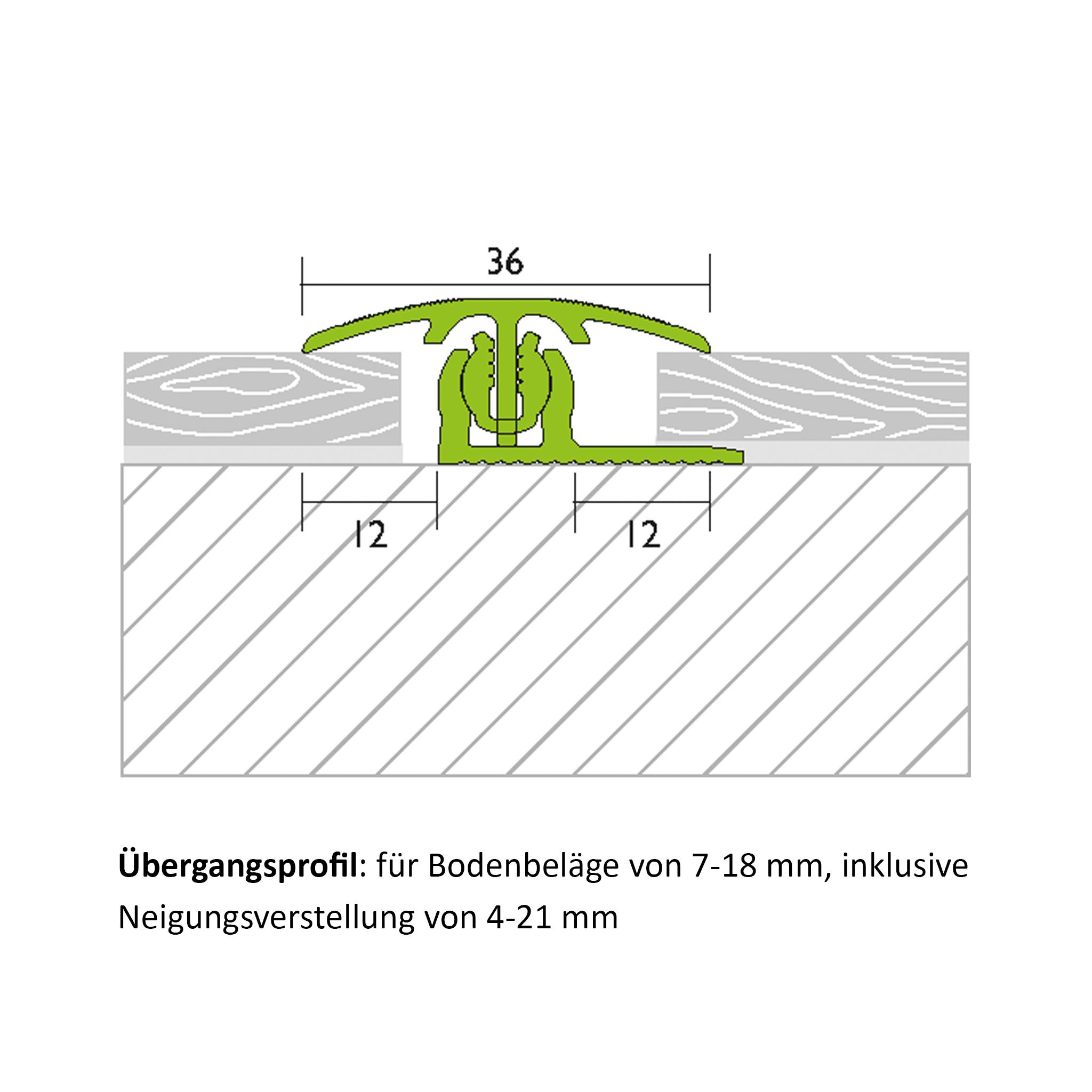 Übergangsprofil Alu Bronze 1,00m
