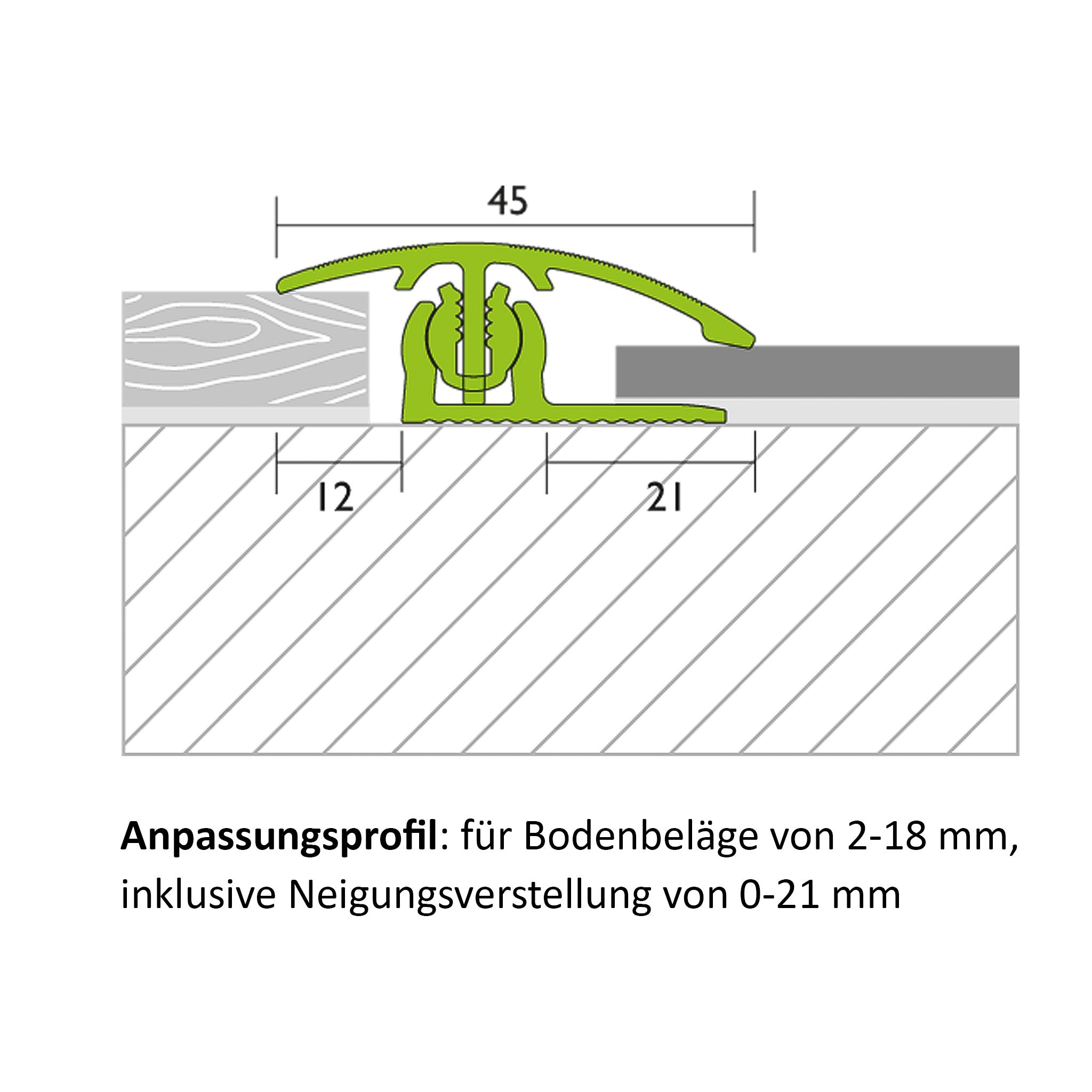 Anpassungsprofil Alu Champagne 1,00 m