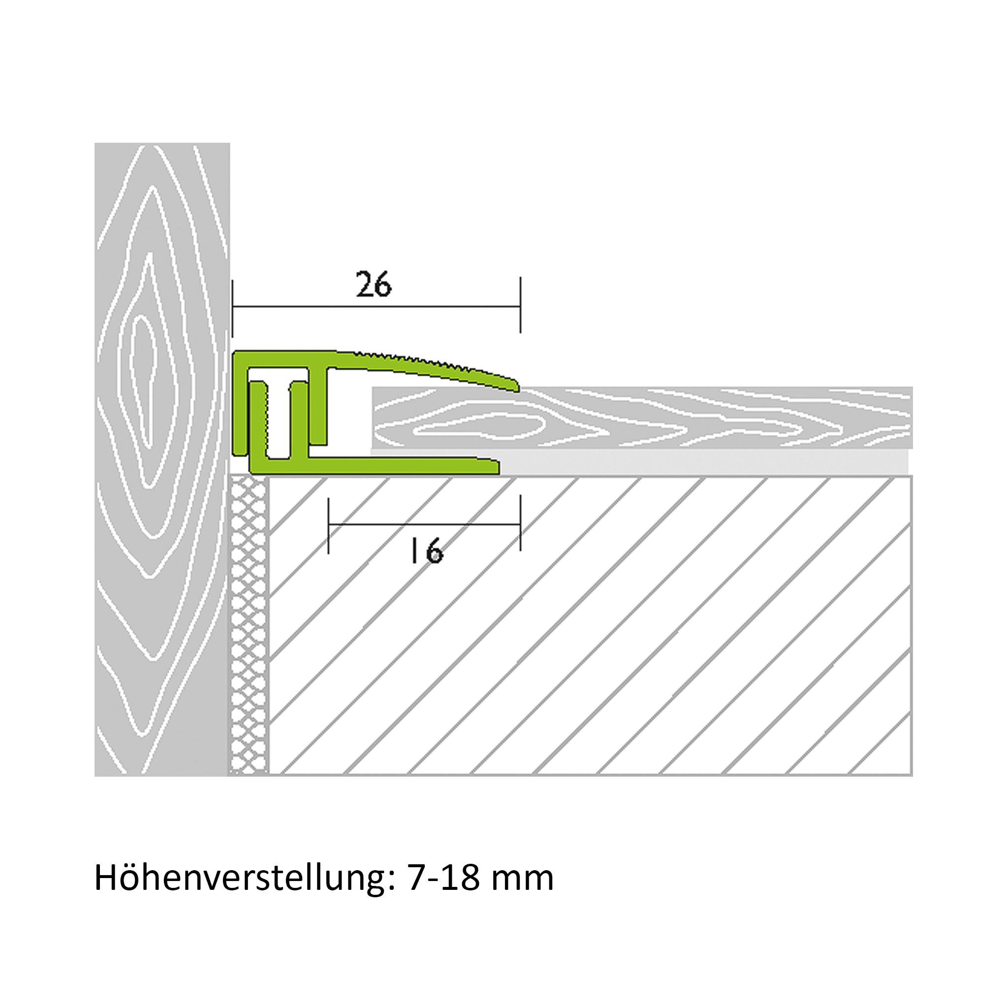 End profile aluminium champagne 1,00 m