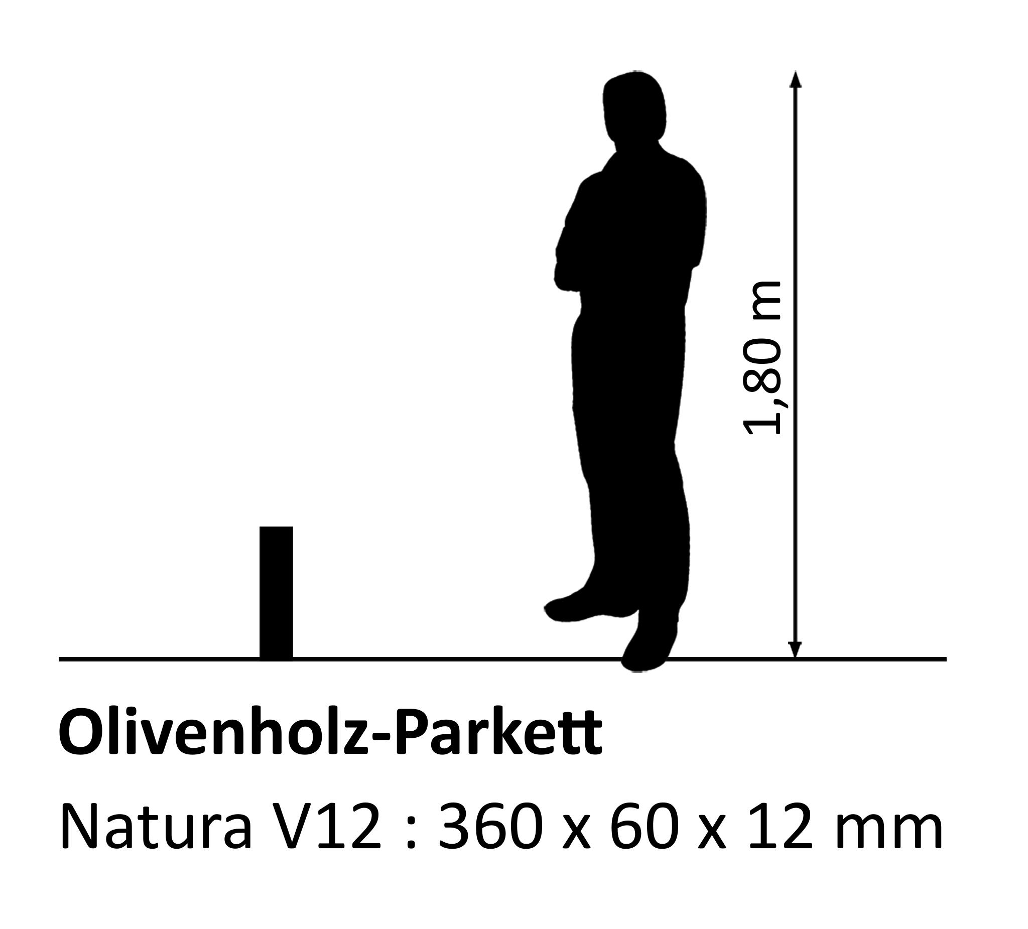 Olivenholzparkett Natura V12