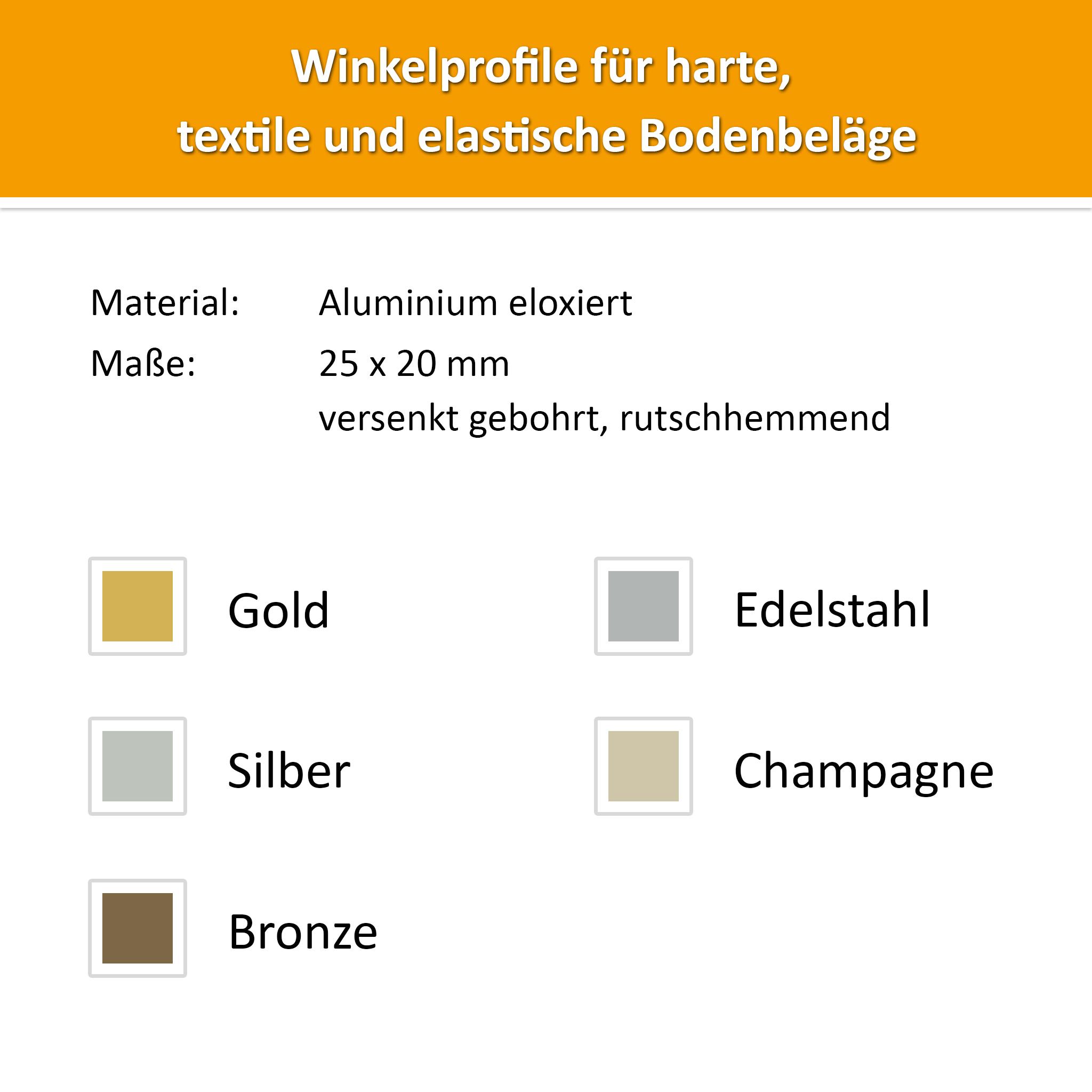 Winkelprofil Alu Champagne 24,5x20mm
