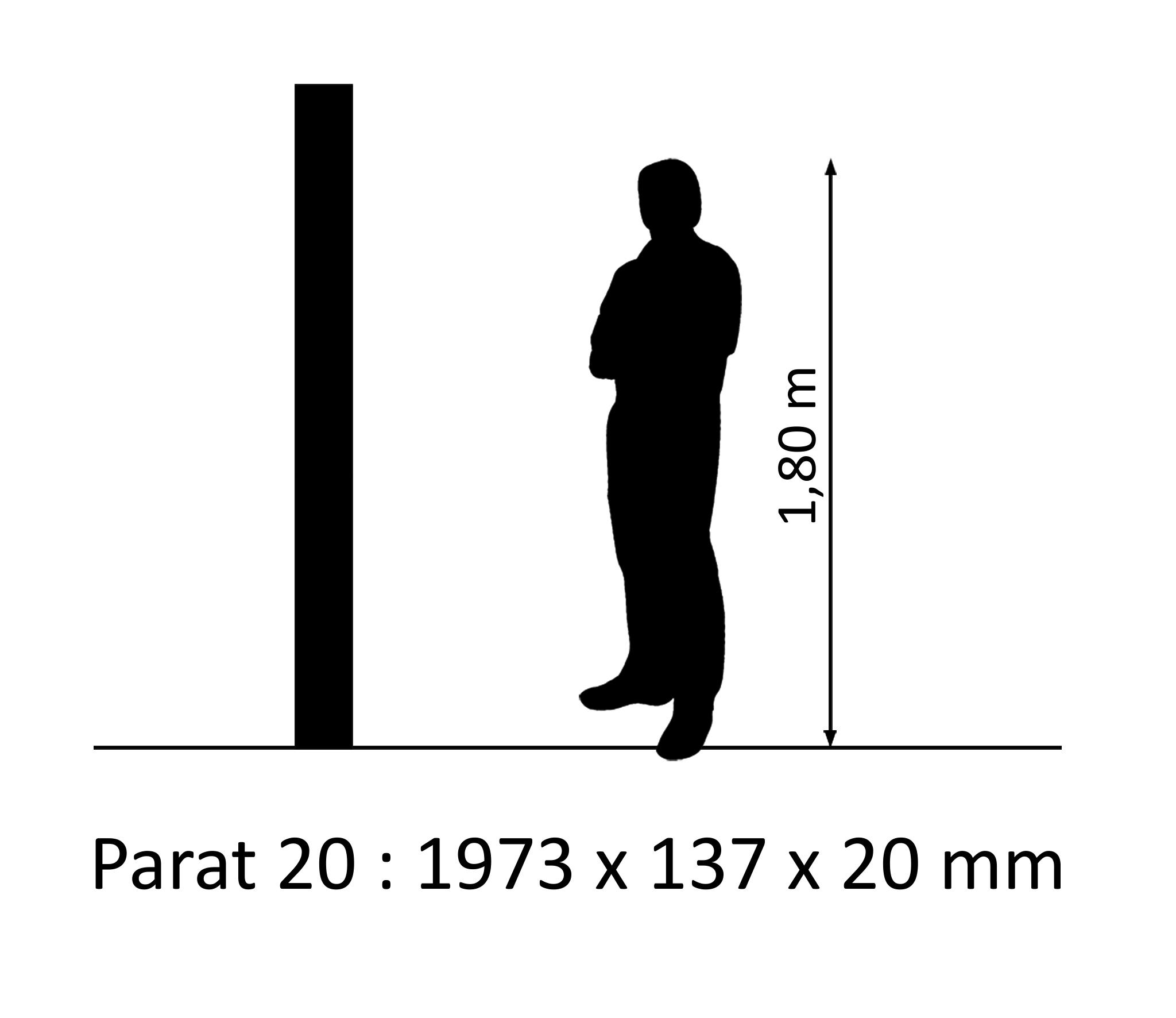 PARAT 20 Borovice Rustikal 2x olej